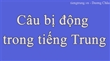 Câu bị động trong  tiếng Trung