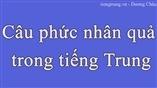 Câu phức nhân quả trong tiếng Trung