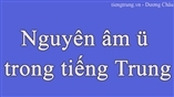 Nguyên âm ü trong tiếng Trung