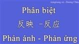 Ngữ pháp tiếng Trung - Phân biệt 反映 vs 反应. Phản ánh - Phản ứng